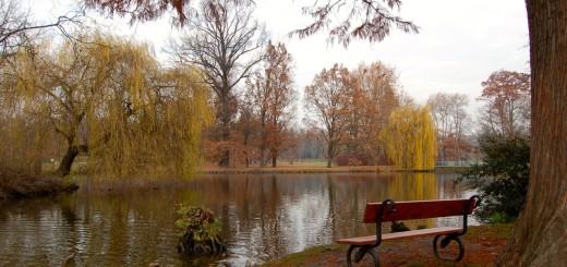 Teich im Park Stromovka
