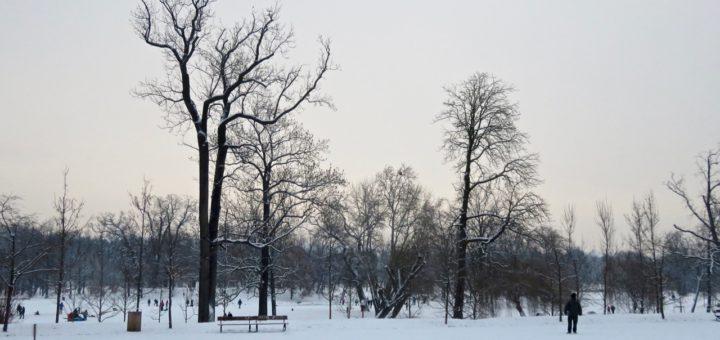 Der Prager Stromovka-Park im Schnee