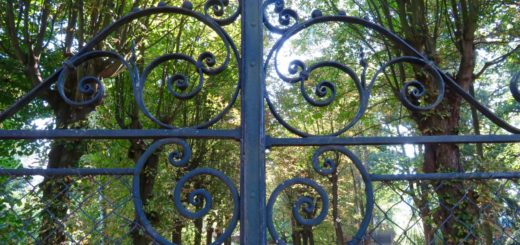 Gitter und Allee in Klánovice